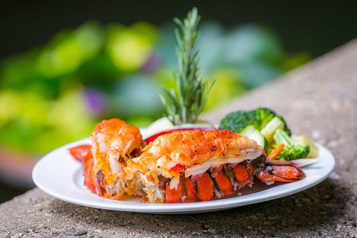 HKHweb_DD_bibas-lobster_722.jpg